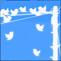 63% of Brands use Multiple Twitter Accounts